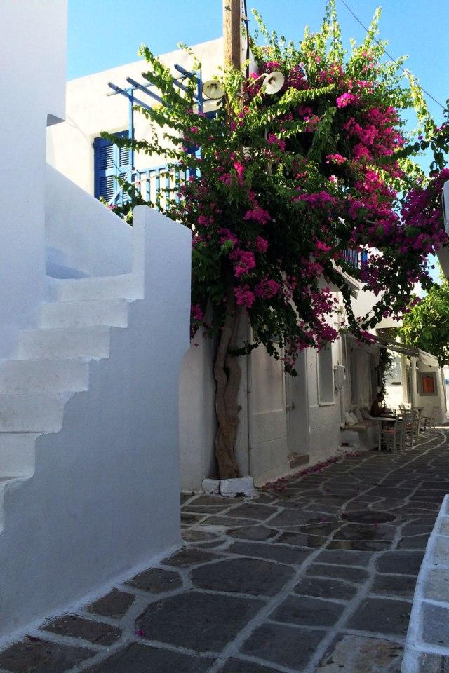 grecia_2015_2_14